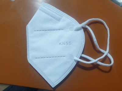 Reusable N 95 Face Mask